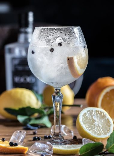 Gin tonic recept